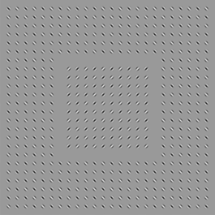 illusions_